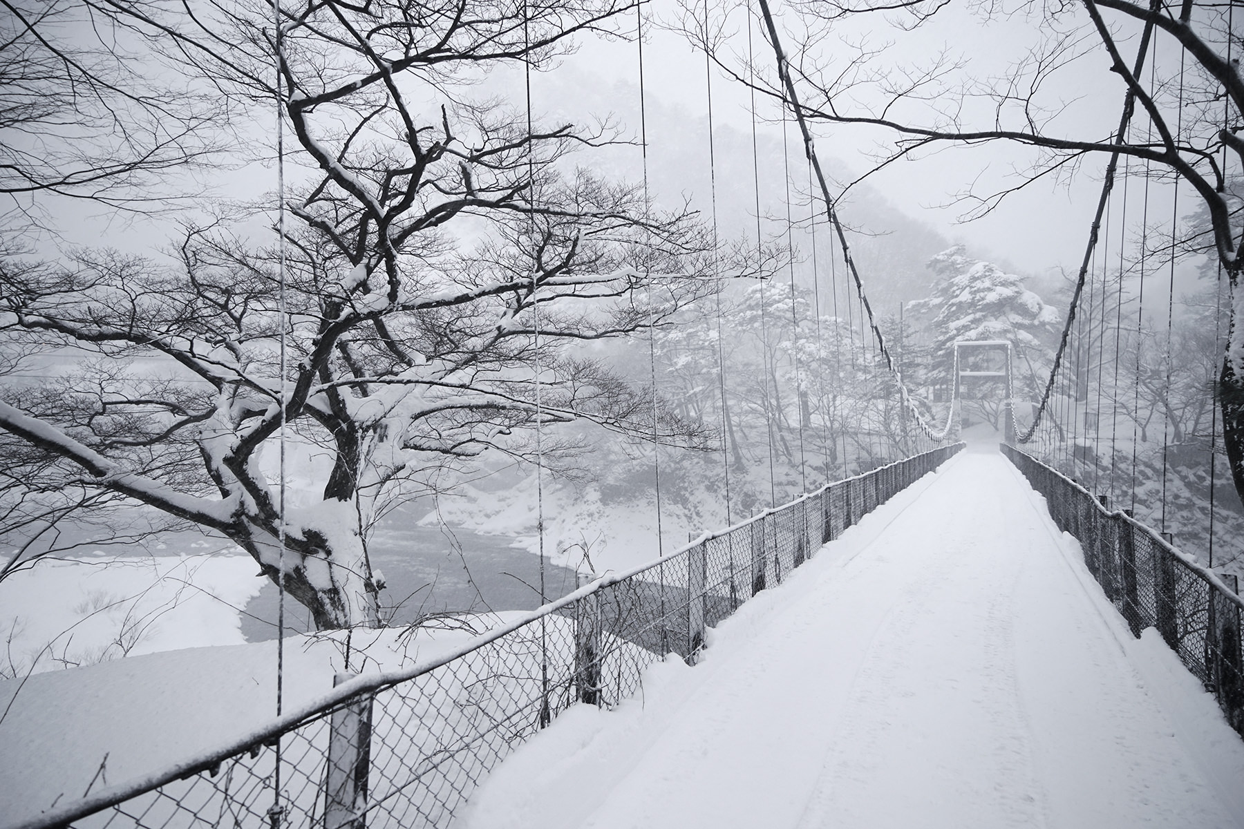 冬-1雪の吊り橋