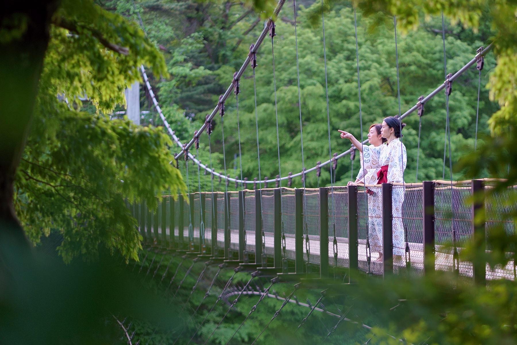 吊り橋のふたり